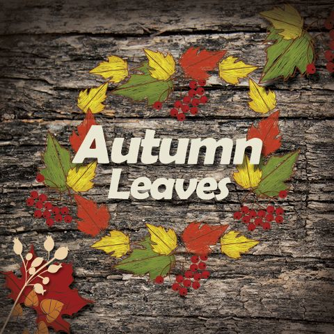 Autumn leaves clipart and backgrounds