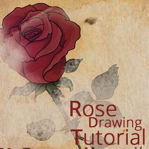 how to draw a rose step by step with PicsArt app