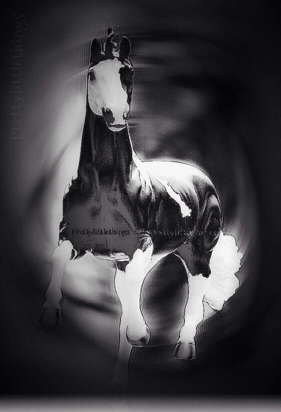 pic by @niceandthings my edition #macro #emotions #cute #blur #freetoedit #editstepbystep