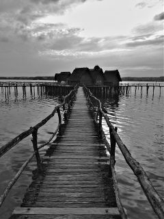 thebodensee7000yearsago bodensee nature photography blackandwhite