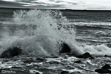 beach photography blackandwhite